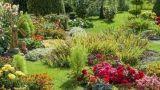 La progettazione del giardino