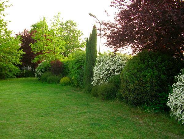 Principi per progettare il giardino - Esempio di siepe naturale, o mista - Tratto dalla Compagnia del giardinaggio
