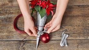Decorazioni natalizie con la stella di natale