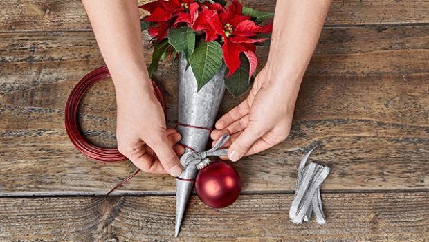 Come Decorare Una Stella Di Natale.Stella Di Natale Come Usarla Per Le Decorazioni Natalizie