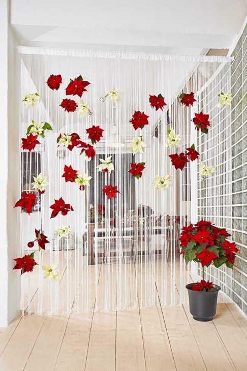 Divisorio stanze con stella di Natale