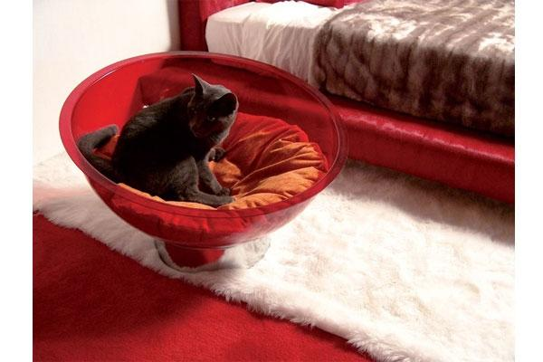 Seduta per cane o gatto di Bernardelli