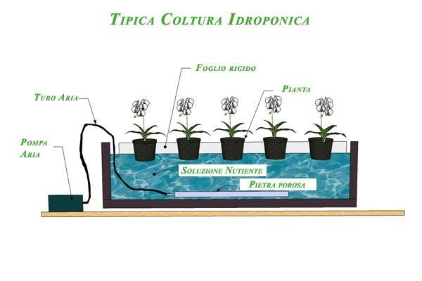 Sistema idroponico