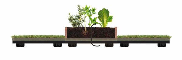 Orto sul tetto con Roofingreen Nature Veg