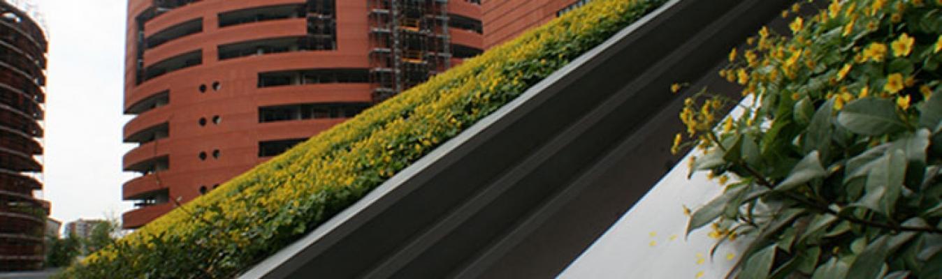 Soluzione copertura green di Daku