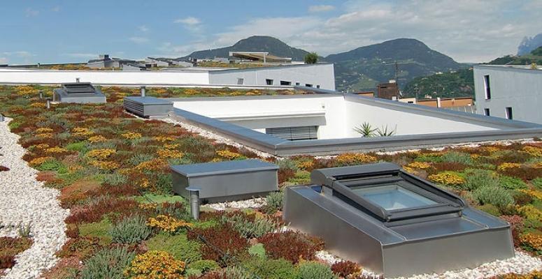 Soluzione tetto verde Climagruen