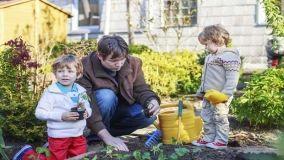 Lavori di febbraio in giardino