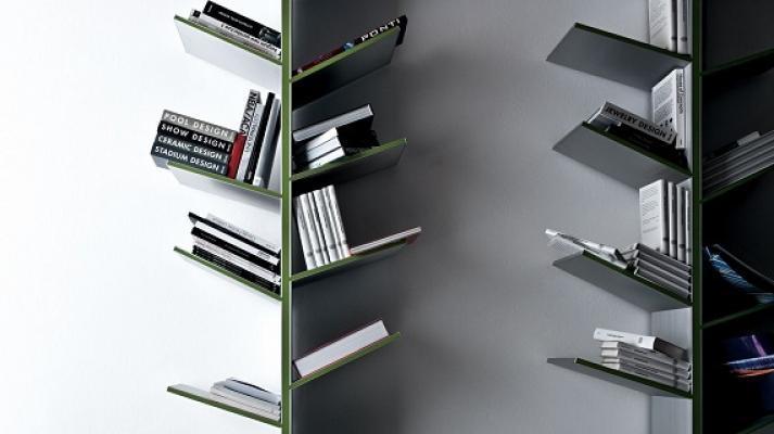 Dettaglio della libreria Fagus