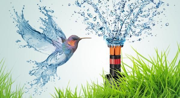 Irrigazione interrata con Colibrì di Claber