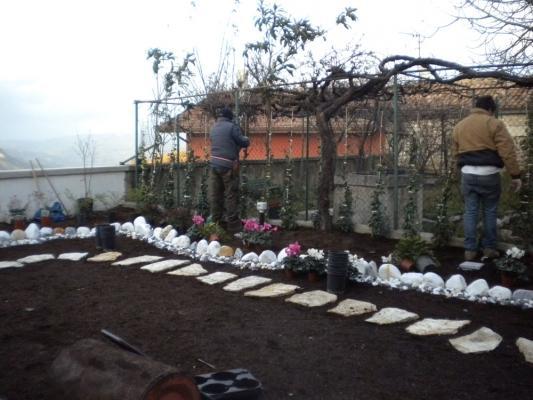 Piantumazione in giardino
