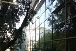 Foster pellicole di sicurezza per vetri di Foster