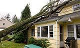 Le perizie per danni sono necessari per attivare la pratica di un sinistro presso una compagnia di assicurazioni.