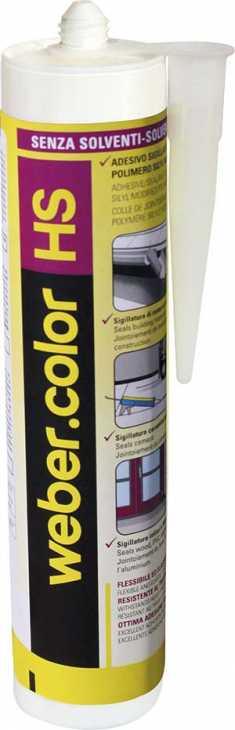 Silicone antimuffa Weber.color HS