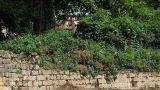 Consolidare e risanare i muri controterra