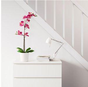 Orchidea finta di Ikea