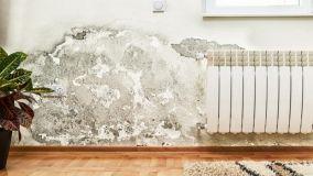 Come sconfiggere efficacemente umidità e muffa in casa