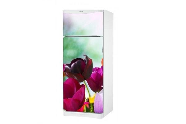 Adesivo per frigo Tulipani di stampasututto