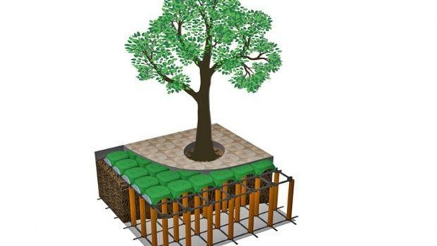 Contenere le radici delle piante con l'impiego di cupole e teli antiradice