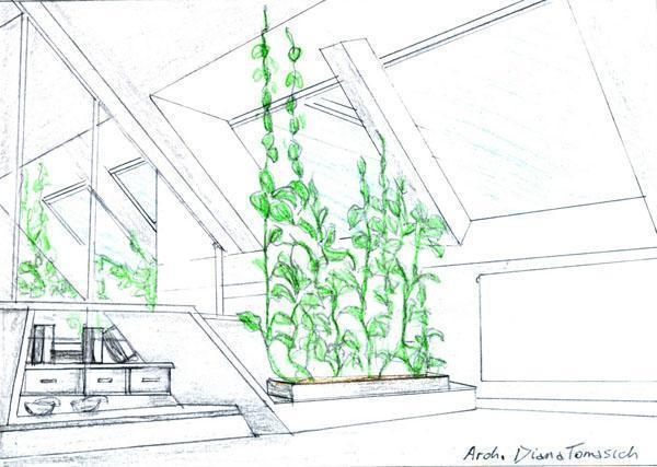 Disegno mansarda divisorio verde