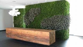 Consigli per realizzare un giardino verticale fai da te