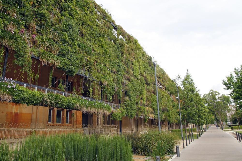 Facciata di edificio con giardino verticale