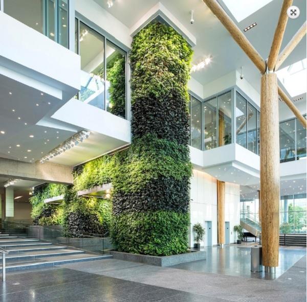 Esempio BioWall di NEDLAW Living Wall