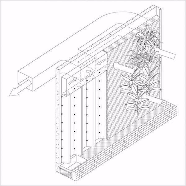 Schema d funzionamento BioWall di NEDLAW Living Wall