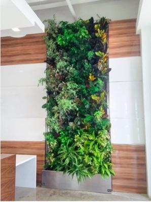 Pannello BioWall di NEDLAW Living Wall