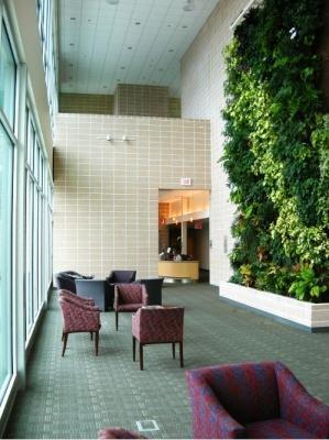 Parete verticale BioWall di NEDLAW Living Wall