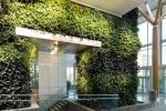 Parete BioWall di NEDLAW Living Wall