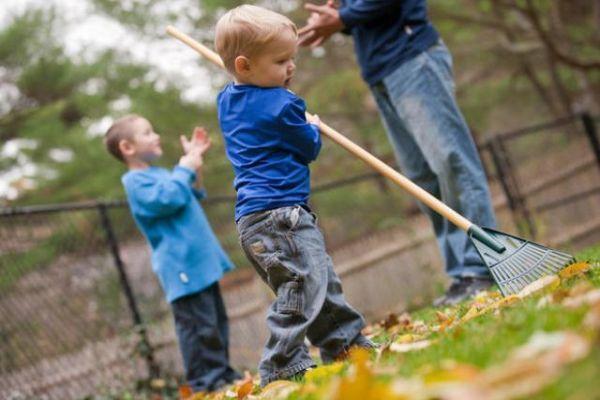 Attrezzi per la cura del verde in giardino