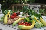Tavola con coltivazioni autunnali