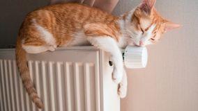Regole per il buon riscaldamento