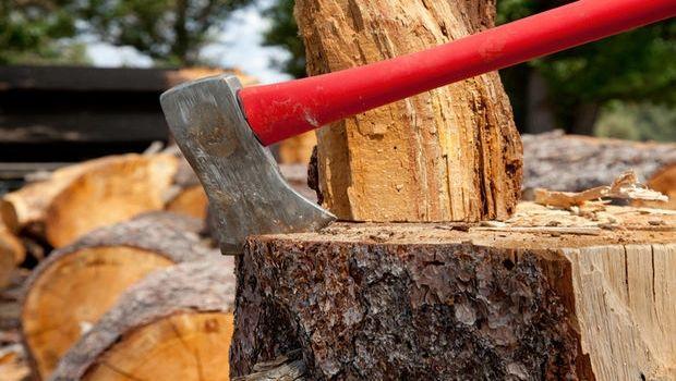 Come scegliere la migliore legna per i camini