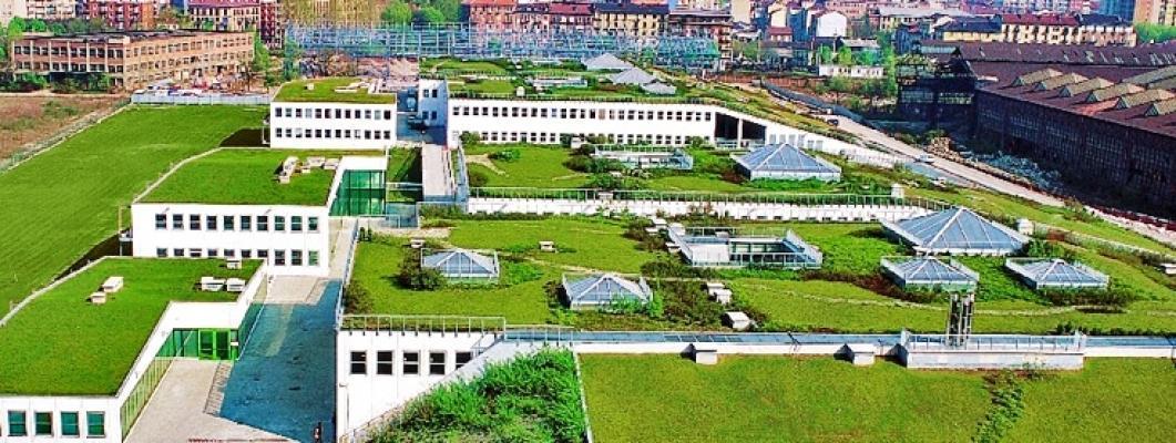 Tetti verdi metropolitani: realizzazione azienda Zinco