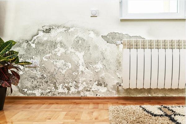 Danni da umidità nelle pareti
