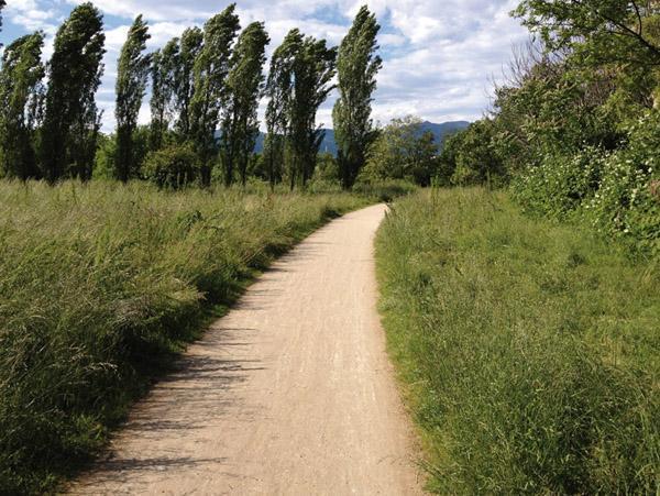 Calcestre sentiero - Zandobbio