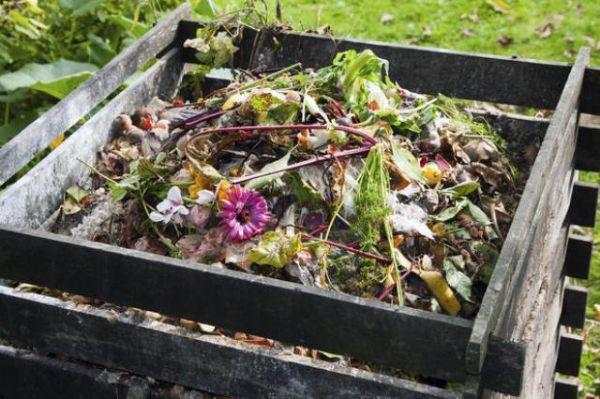 Rifiuti verdi, compostaggio