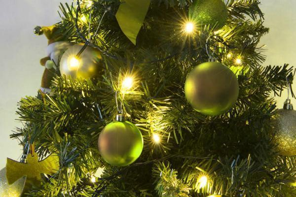 Decorazione giardino Natale ghirlanda luci Dmail