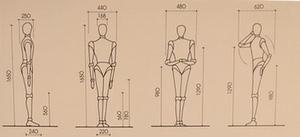 Progettare gli spazi tenendo conto delle misure antropometriche