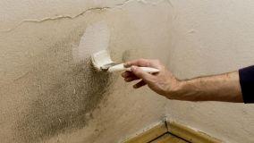 Macchie sui muri, come eliminarle