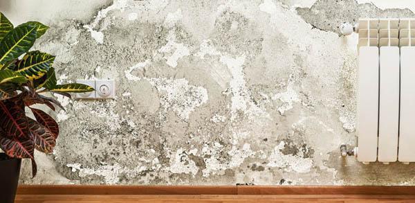 Macchie sui muri - Risanamento Murprotec