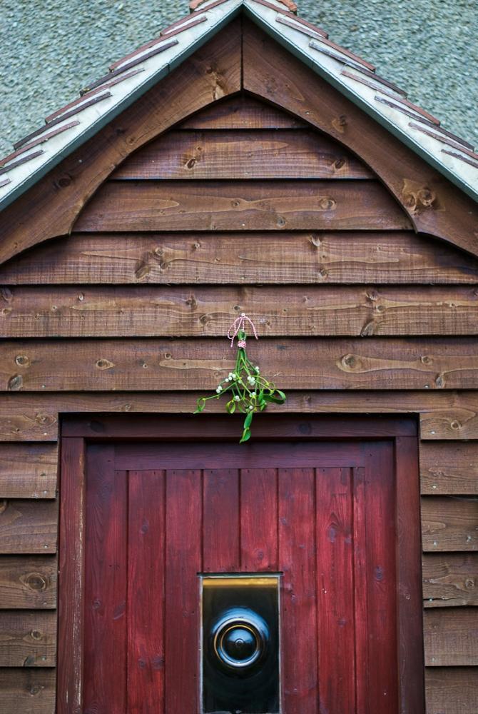 Vischio sulla porta di Firstwelove