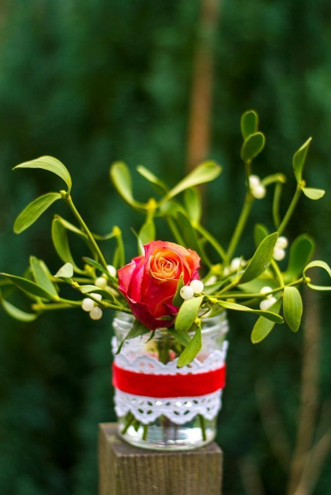 Vischio in vaso di Firstwelove