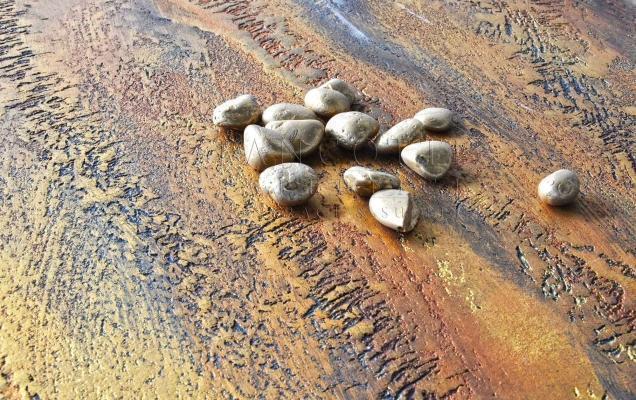 Rivestimenti decorativi pietra-metallo-oro- Pancotti