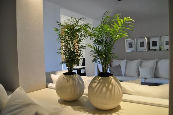 Rivestimenti decorativi Natural Look- Pancotti