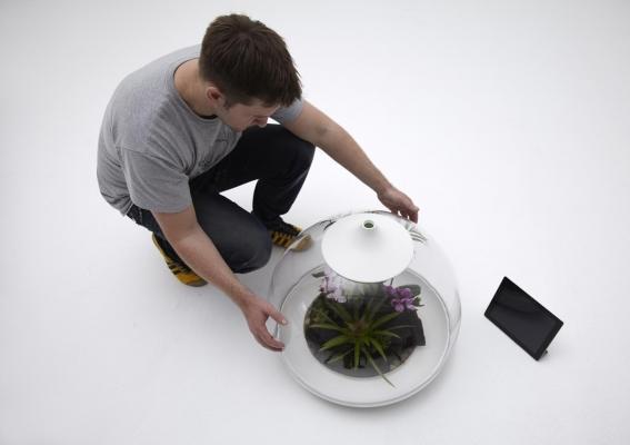 Serra digitale Biome 5 di Samuel Wilkinson