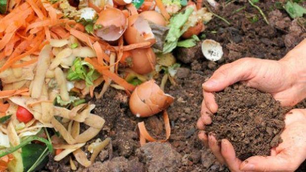 Scopriamo i vantaggi del processo di compostaggio dei rifiuti organici
