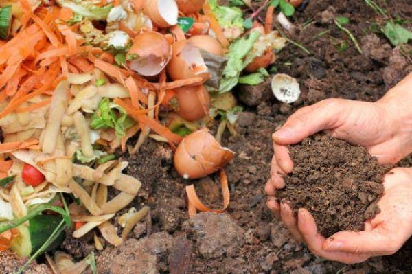 Terriccio frutto del compostaggio