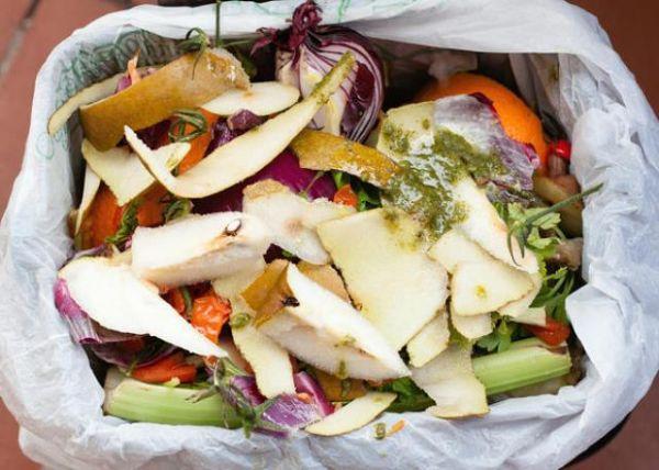 Compostaggio, rifiuti compostabili